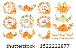 Set Of Floral Wreaths  Pumpkins ...