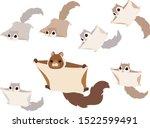 Flying Squirrels Illustration...