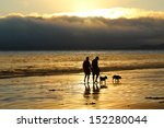 Stock photo walking dogs on beach at sunset 152280044