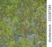 Green Moss  Seamless Tileable...