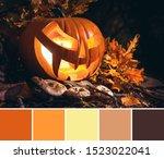 Color Matching Autumn Palette...