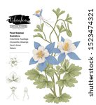 sketch floral botany collection.... | Shutterstock .eps vector #1523474321
