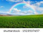 Beautiful Rainbow And Green...