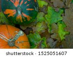 Autumn Composition Of Two Gree...