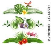 3 Decorative Tropical Borders...