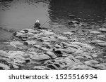 Chongqing  China. A Fisherman...