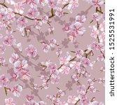 cheery blossom  seamless... | Shutterstock .eps vector #1525531991