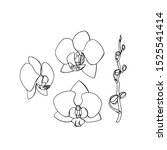 hand drawn orchid flower.... | Shutterstock . vector #1525541414