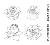 hand drawn minimalistic rose... | Shutterstock . vector #1525548407