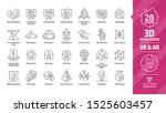 3d visualization outline icon... | Shutterstock .eps vector #1525603457