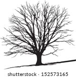 Isolated Tree On The Hill