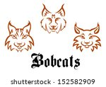 Bobcats and lynxs for mascot or tattoo design or idea of logo. Jpeg version also available in gallery - stock vector