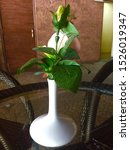Small photo of green and white. unix vase