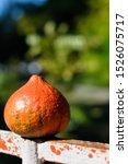 Orange Pumpkin. A Small...