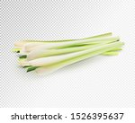 lemongrass herb vegetable set.... | Shutterstock .eps vector #1526395637