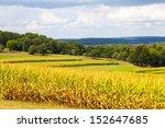 American Countryside Corn Fiel...