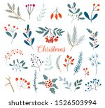 Christmas Floral Collection...