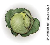 remolacha,col,pepino,fresco,crecer,lechuga,nutrición,verduras,vegetariano,vitamina