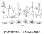 sketch floral botany collection.... | Shutterstock .eps vector #1526875064