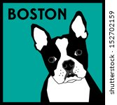 accessories,adorable,animal,art,background,black,boston,breed,bulldog,canine,cartoon,companion,cute,design,dog