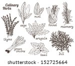 culinary herbs on a white... | Shutterstock .eps vector #152725664