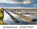 Salt Marshes On The Island Of...