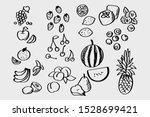 handwritten fruit set for design | Shutterstock .eps vector #1528699421
