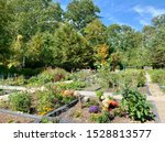 Community Garden. An Area Of...