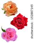 Rose Flowers Isolated On Whit...