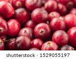 Cranberry Texture. Freshness...