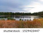 The Danish Landscape. Autumn...