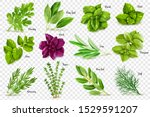 A Large Set Of Herbs On A...