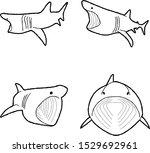 Basking Shark Animal Vector...