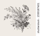 autumn flowers. classic flower... | Shutterstock .eps vector #1530187601