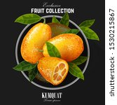exotic fruit kumquat with green ...   Shutterstock .eps vector #1530215867