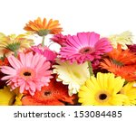 the bouquet gerbera flower as a ...