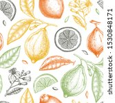 ink hand drawn citrus fruits... | Shutterstock .eps vector #1530848171