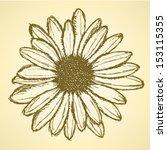 daisy flower  vector sketch... | Shutterstock .eps vector #153115355