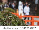 Stock photo scenery of the shinto style wedding ceremony in japan 1531219307