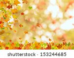 autumn maple leaves falling... | Shutterstock . vector #153244685