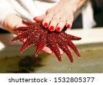A Woman's Hand With Red Nails...