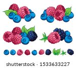berry berries illustration... | Shutterstock .eps vector #1533633227