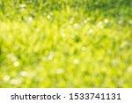 Green Grass Blurred Background  ...