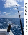 A Fishing Rod And Down Rigger...