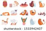 adorable cats. cute dancing cat ... | Shutterstock .eps vector #1533942407