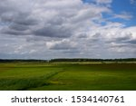 View Of A Pastureland  Meadow ...