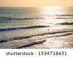 A Lone Surfer Silhouetted...