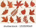 set of brown autumn leaves over ... | Shutterstock .eps vector #153509069