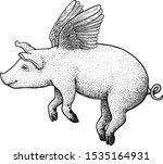 Flying Pig Illustration ...