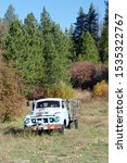 Vintage blue truck in farmyard of Liberty historical townsite nearBlewett Pass in eastern Washington